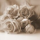 Roses in Sepia by Lozzar Flowers & Art