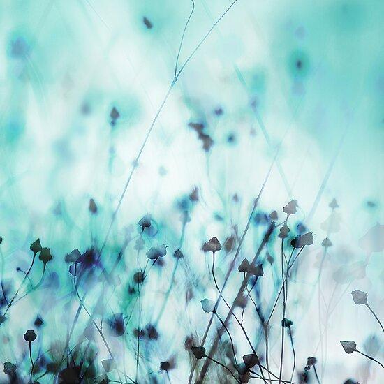 Blue by Mareike Böhmer