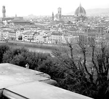 Overlooking Florence, Italy by will897