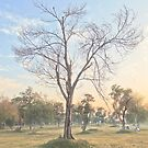 Valvet by Khizar Rajput