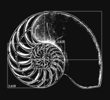 Fibonacci on a nautilus shell Kids Tee