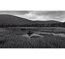 Infilling Lake Photographic Print