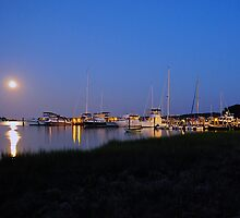 Full Moon Over Harbor! by eleanor p.  labrozzi