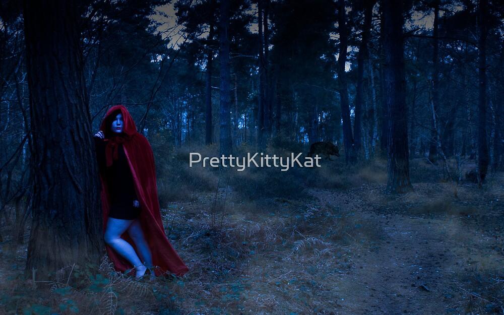 Red Riding Hood #2 by PrettyKittyKat