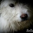 BELLA by Rue McDowell