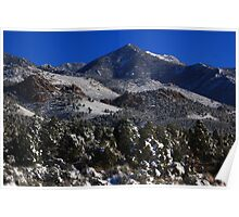 High Country Spring Poster