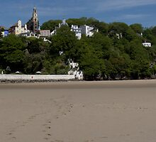 Portmeirion From The Estuary by Matthew Walters