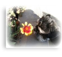 Max and the Flower Canvas Print
