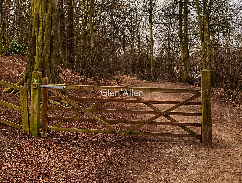 Gate in the Wood by Glen Allen