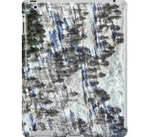 Wintry Forest Shadows iPad Case/Skin