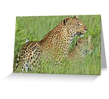 Hiding in the tall grass! Greeting Card