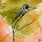 Birds of Canyon Lake by Rhonda Strickland