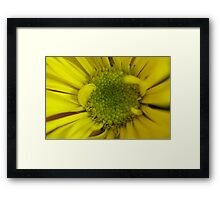It was all Yellow Framed Print