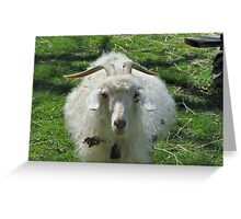 Billy Goat's Gruff Greeting Card