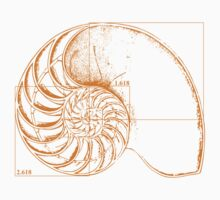 Fibonacci on a nautilus shell (orange) One Piece - Short Sleeve