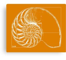 Fibonacci on a nautilus shell (orange) Canvas Print