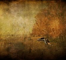 Sandpiper Piping by Lois  Bryan