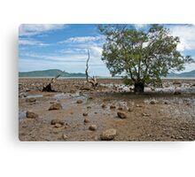 Mangrove at low tide, Chalong Bay, Phuket Canvas Print