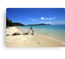 Driftwood on Panwa Beach, Phuket Canvas Print