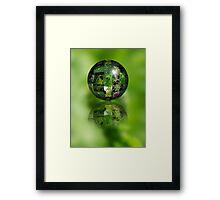 Green Flower Ball Framed Print