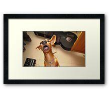 Don ra Framed Print