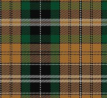02160 Vaughan (Welsh Series) Tartan Fabric Print Iphone Case by Detnecs2013