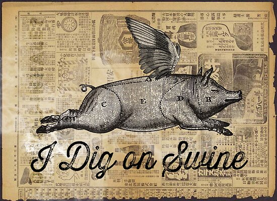 i dig on swine by vinpez