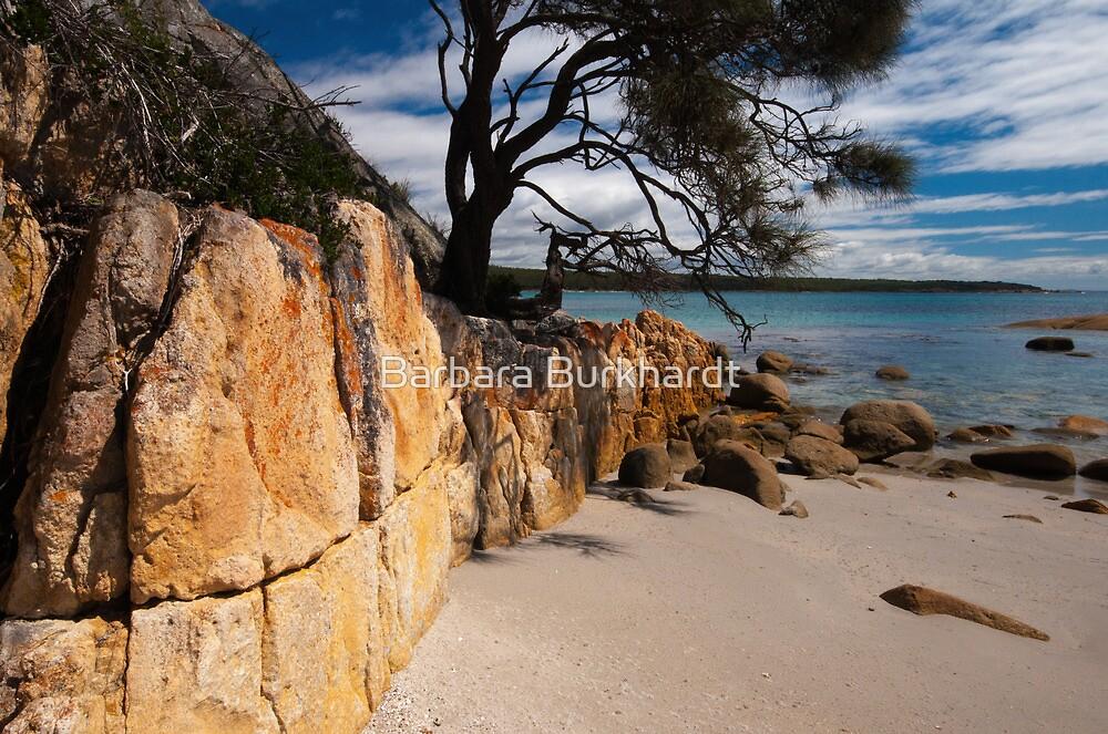 Unmistakably Tasmania by Barbara Burkhardt