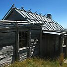 Craig's Hut - A Closer Look by Marilyn Harris