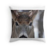 White-tailed Deer Buck up close and personal Throw Pillow