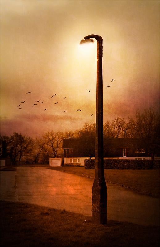 Evening by Svetlana Sewell