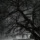 Heavy Rain by Svetlana Sewell