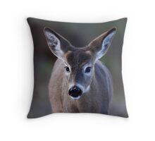 Pretty doe - White-tailed Deer Throw Pillow