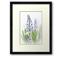 It's so nice to see them grow (encore).... Framed Print