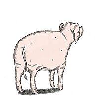 Pig 2 Photographic Print