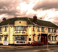 Barley Mow by Andrew Pounder
