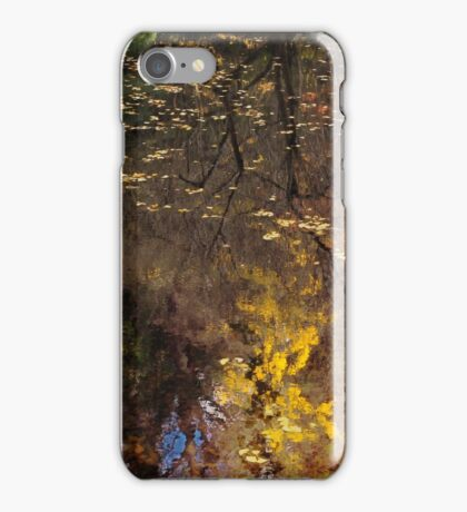 Late Autumn Reflections on Pond iPhone Case/Skin