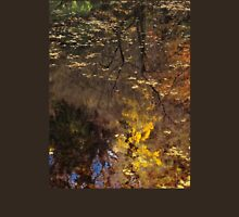 Late Autumn Reflections on Pond Unisex T-Shirt