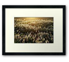 Enlightened Crowd Framed Print