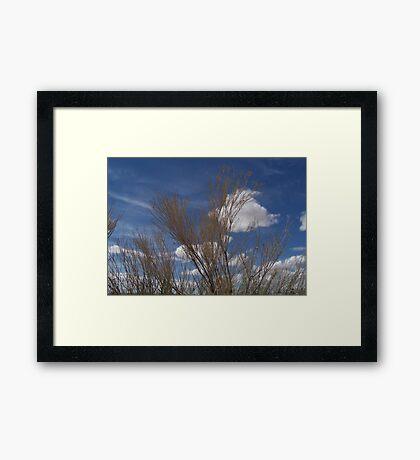 Brush and Sky Framed Print