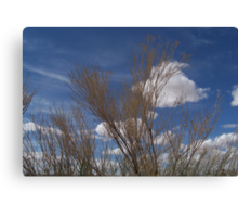 Brush and Sky Canvas Print