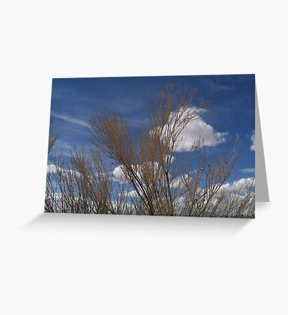 Brush and Sky Greeting Card