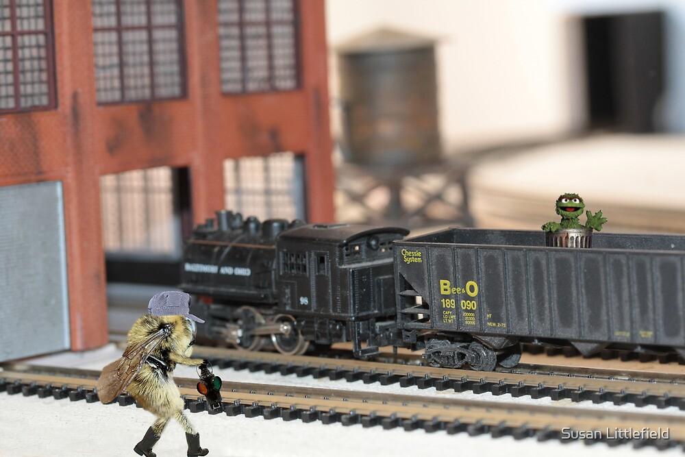 Bee & O Railroad by Susan Littlefield
