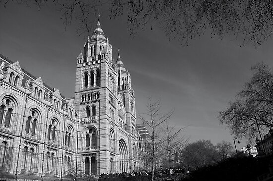 London Natural History Museum by Mark Williams