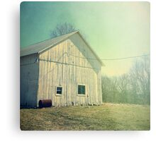 Early Morning in the Country Metal Print