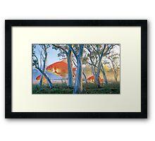 Snow Gum Goldfish Framed Print