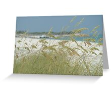 Turks and Caicos Sea Oats Greeting Card