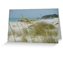 Turks and Caicos Sea Oats II Greeting Card
