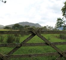 Gate by TWhittaker