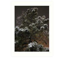 Winter Sprinkles Art Print